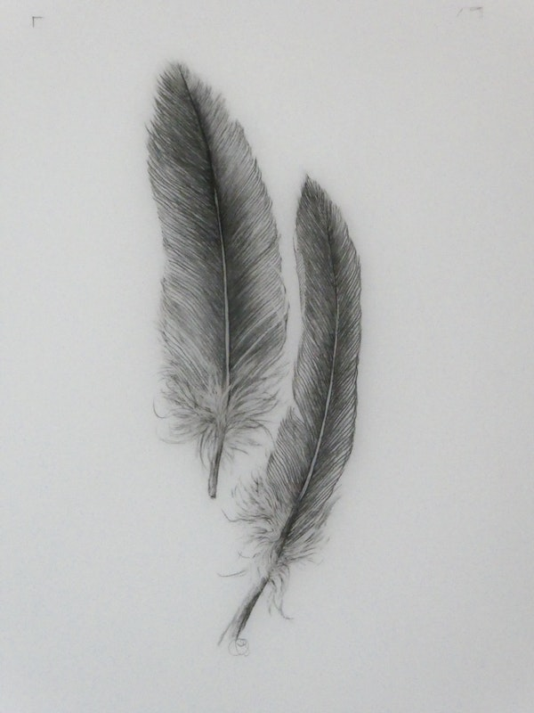 Feather Light 2