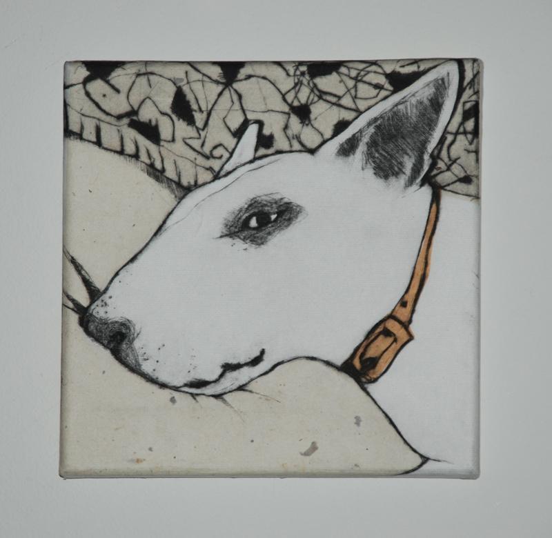 English Bull Terrier