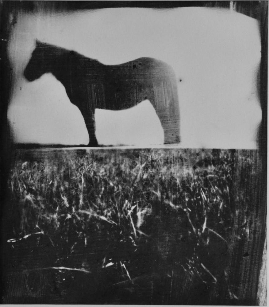 Horse Latitudes 11