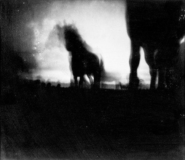 Horse Latitudes 4