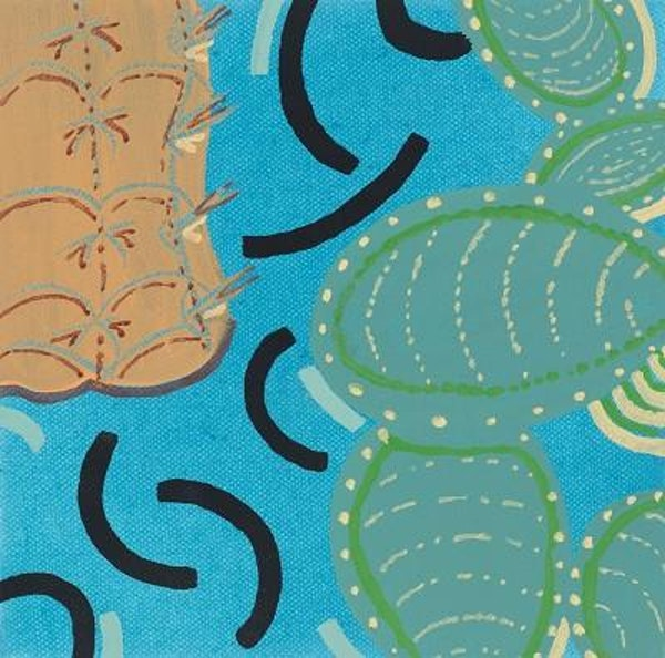 Opuntia microdasys/cactus on blue
