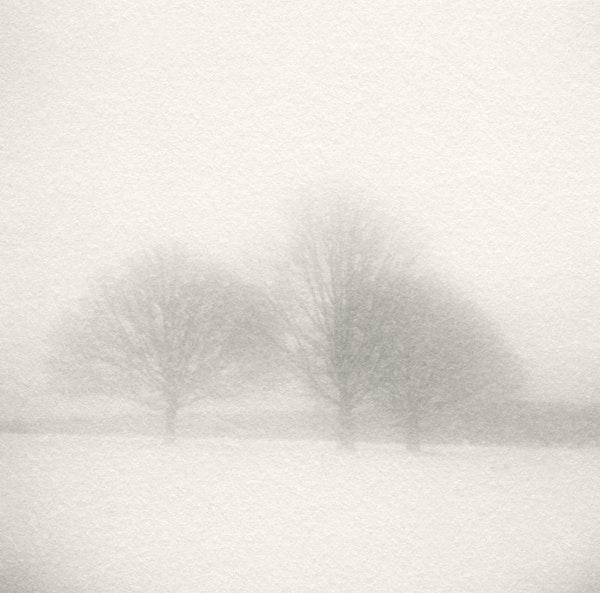 Snow x 9