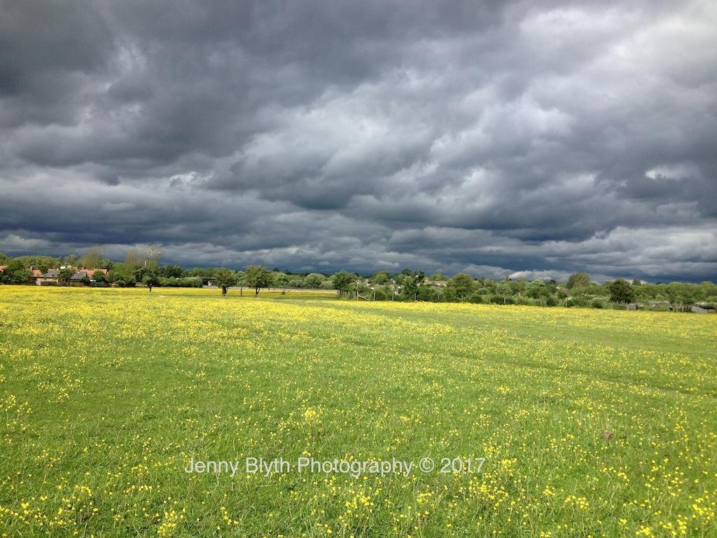 Summer Storm, May, 2015