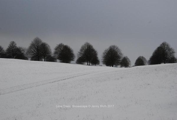 Lime Trees, Snowscape, 2016