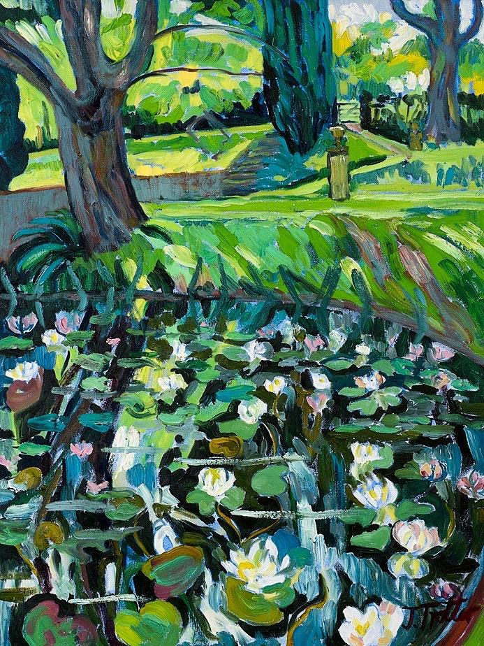 Lily Pond 2017